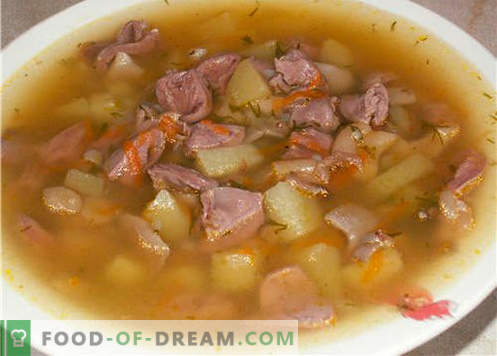 Pork soup - the best recipes. How to properly and tasty cook soup in pork broth.