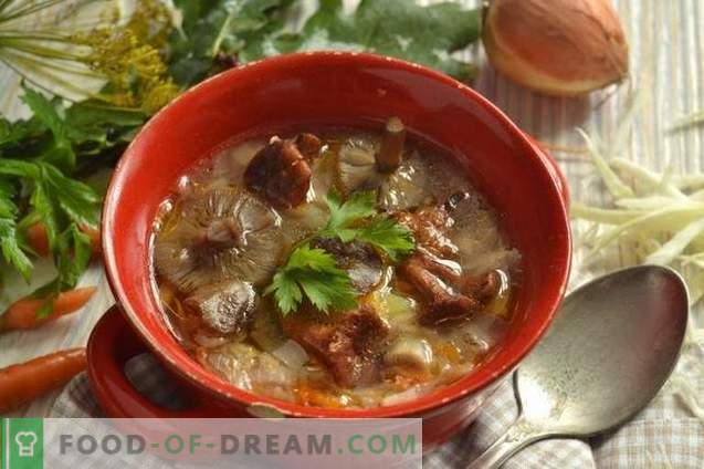 Mushroom cabbage soup with cabbage
