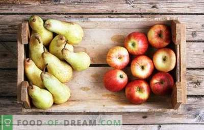 Compote of apples and pears for the winter: the components of taste. Favorite compote of apples and pears for the winter in recipes without knowledge