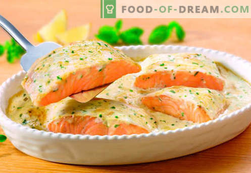 Salmon in a creamy sauce - the best recipes. How to properly and tasty cook salmon in a creamy sauce.