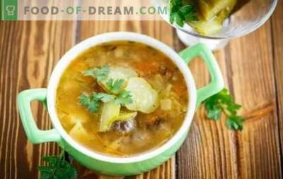Pickle with mushrooms - an aromatic soup. Recipes from simple to very simple - we cook home pickles with mushrooms and meatless meat