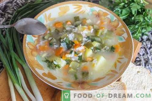Pickle - delicious and very economical soup