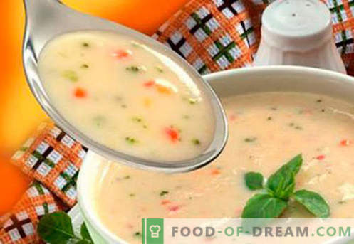 Soups for children - proven recipes. How to properly and tasty cook soups for children.
