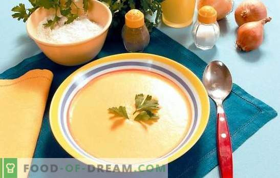 Soup-puree in a multicooker: lazy gourmets. Recipes soups puree in a slow cooker: cheese, chicken, vegetables, mushrooms, liver