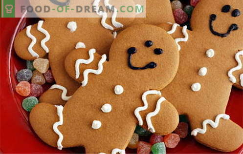 Gingerbread cookies - the best recipes. How to cook gingerbread cookies.