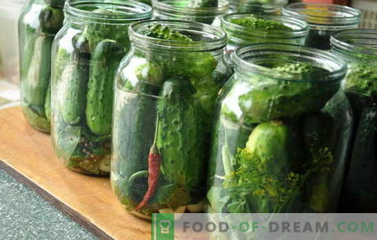 Pickled cucumbers - where without them ?. How to pickle cucumbers at home and the peculiarities of this process