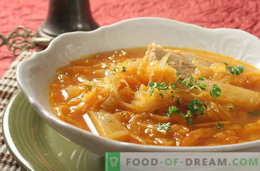 Cabbage soup - the best recipes. How to properly and tasty cook cabbage soup.