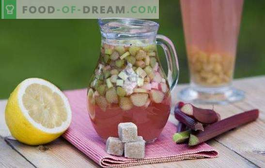 Rhubarb kvass is an ideal drink for a hot day. The best recipes for rhubarb kvass with spices, mint, lemon, honey