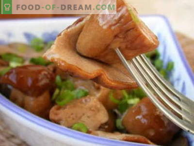 Pickled mushrooms - the best recipes. How to properly and tasty cook pickled mushrooms.