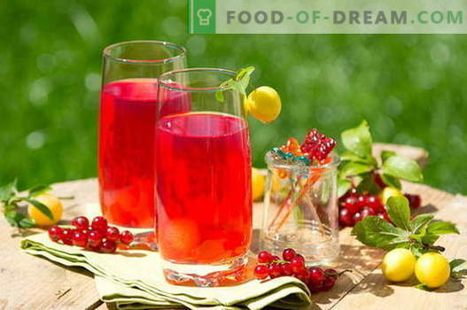Currant Compote - the best recipes. How to properly and tasty cooked currant compote.