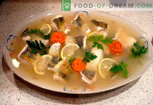 Pike - the best recipes. How to properly and tasty cook jellied pike.