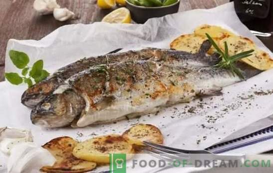 Catch fish, everything is delicious on the grill! Grilled sea and river fish recipes: cooking aid for fishermen and lovers of tasty fish