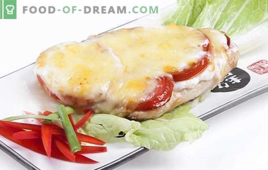 Chicken fillet with cheese is a tasty dish for every day and holidays. The best recipes for chicken fillet with cheese: which cheese is better to choose?