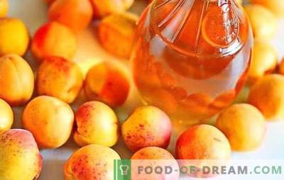 Braga from apricots - how to make it right? Ingredients, recipes and recommendations for the preparation of home baked apricot