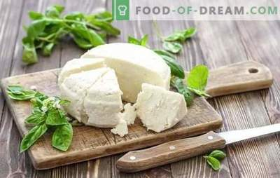 Sour milk cheese is a natural dairy product. Variants of cooking cheese from yogurt at home