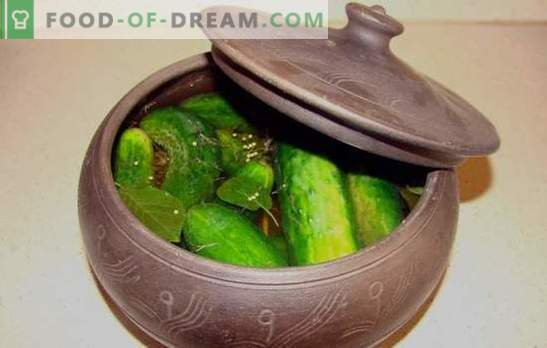 Mistresses prefer to make salted cucumbers in the pan! Recipes of salted cucumbers in the pan and dishes with their participation