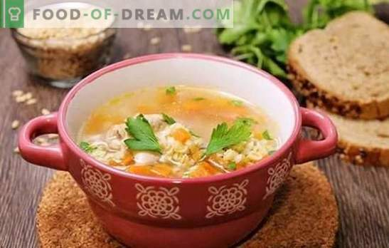 Chicken broth pearl barley - rich taste of nutritious food. Recipes soups, soup and pickle in chicken broth with barley