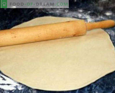 Yeast pizza dough fast, simple recipes