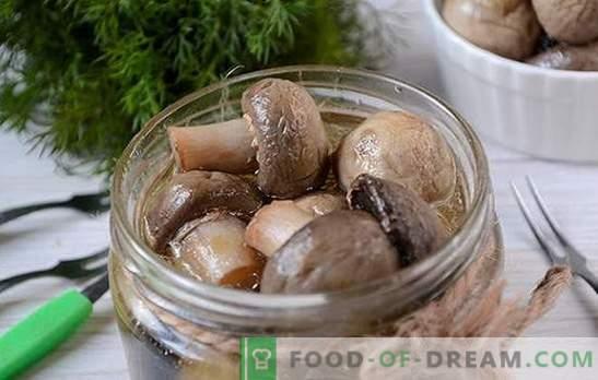 Marinated instant champignons: the secret of vinegar marinade. Photo-recipe for the preparation of marinated champignons