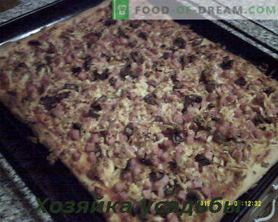 Homemade pizza, cooking recipe with photos step by step