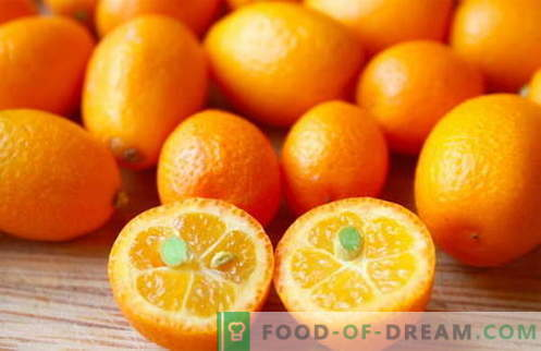 Kumquat - useful properties and use in cooking. Recipes with kumquat.