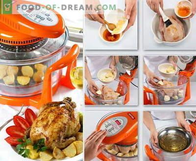 Vistu aerogrilā - labākās receptes. Kā pareizi un garšīgi gatavot vistas konvekcijas krāsnīs.