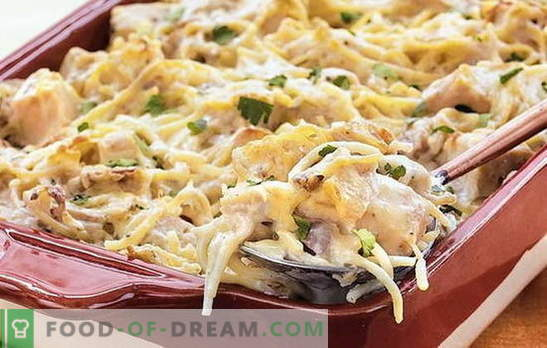 Chicken spaghetti - a quick and inexpensive dinner. How to cook spaghetti with chicken for the joy of the whole family: the best recipes