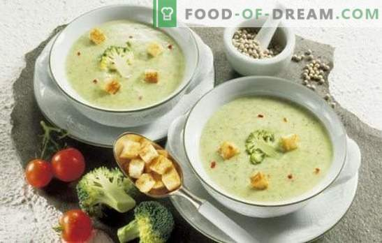 Creamy cream soups: insanely delicious tenderness. Better copyrighted recipes for simple and fast cream-mashed potatoes