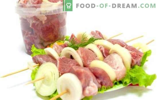 Marinade for kebabs with vinegar and onions - the most popular! Recipes marinade for kebabs with vinegar and onions from various types of meat