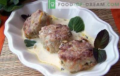 Meatballs in sour cream sauce - a hearty treat for children and adults. Recipes for meatballs in sour cream sauce: choose the right type of meat