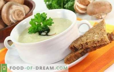 Mushroom soup with melted cheese is an undeservedly forgotten dish! Recipes best mushroom soups with melted cheese