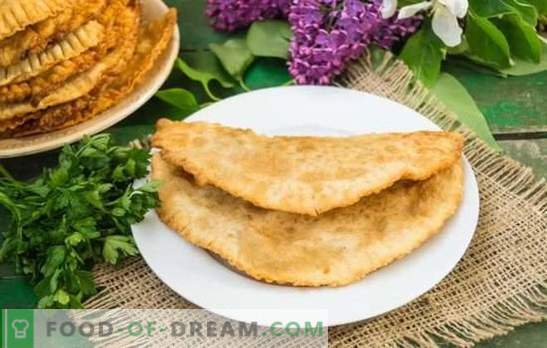 Chebureks homemade with meat: a step-by-step recipe for delicious pastries. Secrets and step-by-step recipes for homemade meat chebureks with meat: prepare, delight your family!