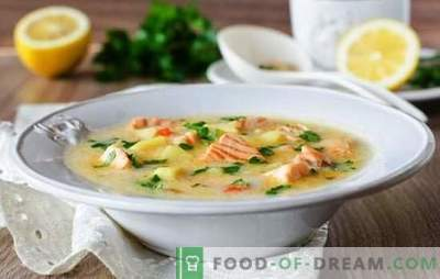 Processed cheese cheese soup is a simple gourmet dish. The best recipes for cheese soups from processed cheese
