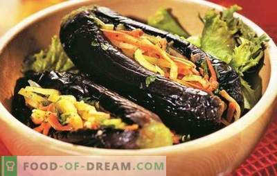 Eggplant stuffed with vegetables for the winter - ready snack. The best recipes for eggplants stuffed with vegetables for the winter