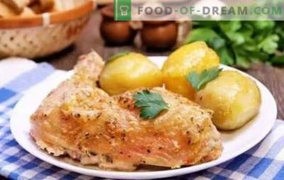 Chicken legs in mayonnaise - a ruddy crust guaranteed. Simple recipes of fried, baked, stuffed chicken legs with mayonnaise
