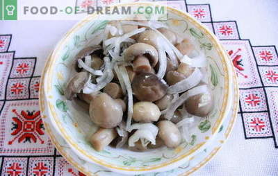 Marinated champignons at home - delicious mushrooms! How to pickle champignons at home: quick, tasty