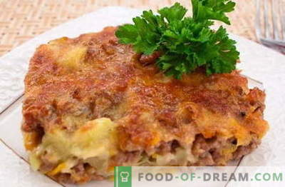 Squash with meat - the best recipes. How to properly and tasty zucchini cooked with meat.