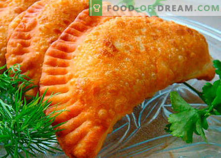 Chebureks with meat - the best recipes. How to properly and tasty cook pasties with meat.