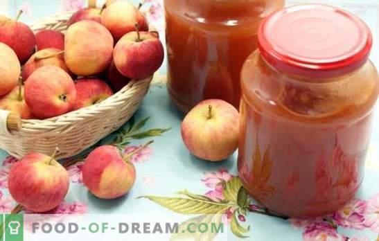 Inceppamento delle mele attraverso un tritacarne - semplificare la tecnologia! Ricette di mele varie dalle mele attraverso un tritacarne per un dolce inverno