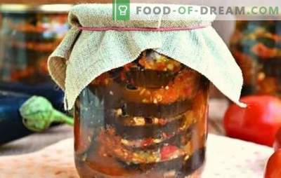 Spicy eggplant appetizers for the winter: salad, saute, Ogonek. Options for eggplant snacks for the winter with tomatoes
