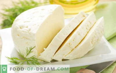 The best recipes for homemade cow milk from cow's milk. Cow milk cheese: basic rules for homemade cheese making
