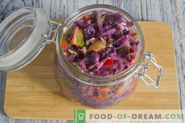 Solyanka of red cabbage for the winter