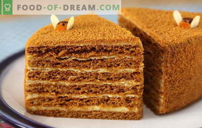 Honey cake with custard - tender! Simple and complex, with condensed milk and sour cream: honey cakes recipes with custard