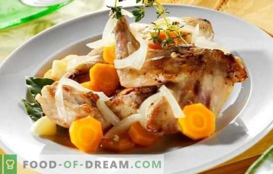 Rabbit fricassee - tender meat with fragrant sauce. The best recipes rabbit fricassee with cream, sour cream, milk
