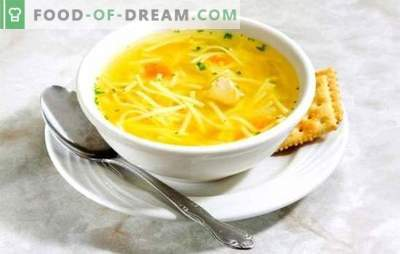 Chicken noodle broth - light soup. The best recipes of chicken broth with noodles: with giblets, egg, cheese, tomatoes