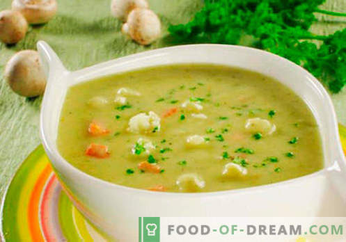 Cream cheese soup - proven recipes. How to properly and cook soup with melted cheese.