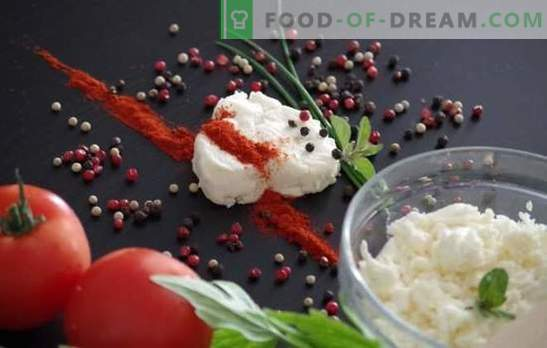 What spices and seasonings are needed for cottage cheese dishes, and what should not be added?