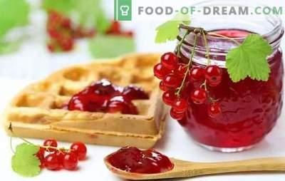 Желе од црвена рибизла е светла и здрава десерт. Најдобри рецепти на црвена рибизла желе со вино, крем, млеко, вино