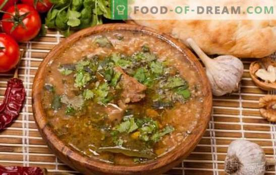 Spicy lamb kharcho is a classic Caucasian recipe. How to prepare a classic lamb kharcho with the addition of