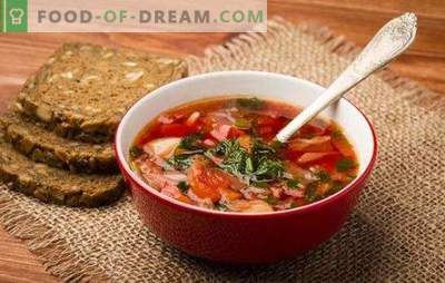 Russian soup: secrets of world fame. Recipes of old and new Russian soup: sour, fresh, green, with kvass, with asparagus